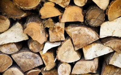 Choosing and Storing the Best Firewood